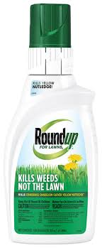 roundup for lawns2 concentrate