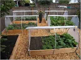 Small Picture Small Vegetable Garden Design Garden Ideas