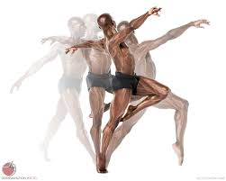 Design In Motion Dance Anatomy Of Bodies In Motion Male Ballet Scott Eaton