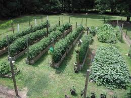 Small Picture Vegetable Garden Design Layout Garden Design And Garden Ideas