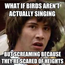 What if birds aren't actually singing But screaming because they ... via Relatably.com