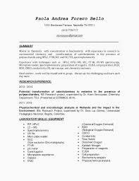 Elegant Resume Template Microsoft Word Lovely Functional Resume