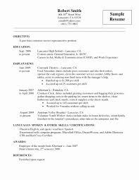 How To Make A Resume With No Job Experience Beautiful 51 Elegant
