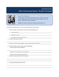 Faithful Immune System Flowchart Worksheet Innate Immune