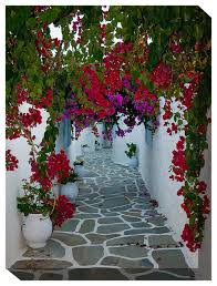 west of the wind outdoor canvas wall art bougainvillea path contemporary outdoor wall art by west of the wind