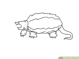 Small Picture 4 Ways to Draw a Turtle wikiHow
