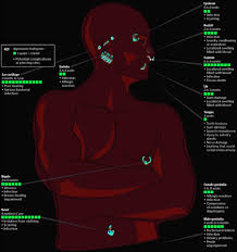 Piercing Chart Body Piercing Healing Time Chart Visual Ly
