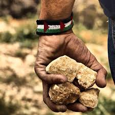 Image result for stones in hand