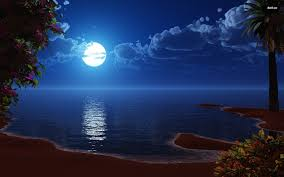 Image result for full moon beach
