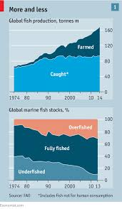 Seafood Yield Chart Improving The Ocean Getting Serious About Overfishing