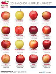 Apple Texture Chart 8 Comparing Apples To Apples A Chart To Help You Choose The