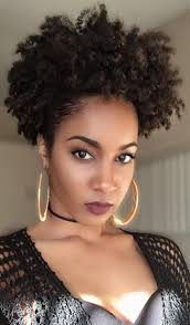 Natural Black Hair Style 284 best loose natural hair inspirations images 7714 by wearticles.com