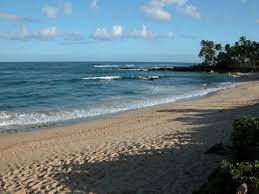 Laniakea Beach Hawaii Beach Safety