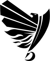 Der Amercian Footballclub SWARCO RAIDERS Tirol