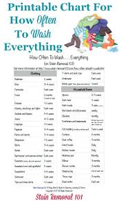 How Often Should I Wash Everything Printable Chart