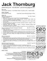 Social Media Resume Example Examples Of Resumes