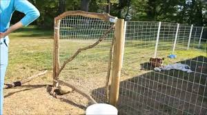 welded wire dog fence
