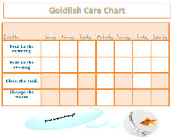 Goldfish Feeding Chart Peace Of The Prairies New Addition To The Family Or