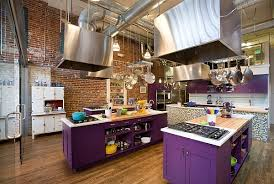 View in gallery Industrial style kitchen with bold purple cabinets