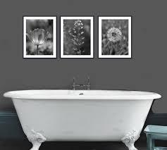 bathroom art prints black and white. black and white art nature photography prints, dark grey wall set, bathroom prints o