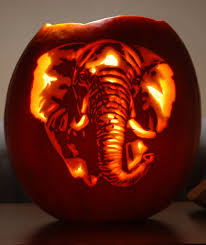 Elephant Pumpkin Carving Pattern Beauteous Elephant A Pumpkin Carving Of An Elephant Carved For Nicq Flickr