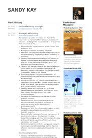 online marketing manager resume samples online marketing resume sample