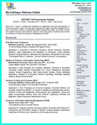 Resume Format For Computer Science Legalsocialmobilitypartnership Com
