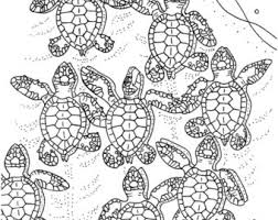 Small Picture Turtle coloring Etsy