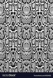 Python Pattern New Snake Python Skin Texture Seamless Pattern Black Vector Image
