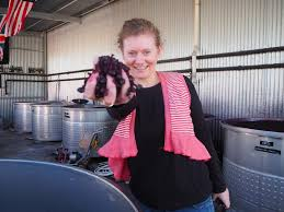 Vino Travels ~ An Italian Wine Blog: Interview with Louise Rhodes: Italian  grapes growing in Australia
