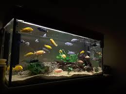 Reverse Osmosis Water Filter Picks  Saltwater Aquarium Filters