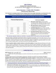 Executive Summary Resume Samples Resume Samples