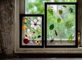 making dried flowers in glass frame hobby handmade premium photo