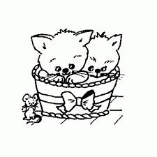 25 Printen Kittens Kleurplaat Mandala Kleurplaat Voor Kinderen