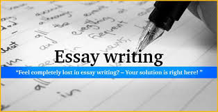 professional essay writing service aristocrat essay writing