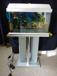 Cool Aquariums For Sale Fish Tank Community Fish For Small Tank Best Tropical Tankswhat