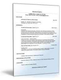 Lebenslauf Buchhaltung Englisch Curriculum Vitae Word Vorlage