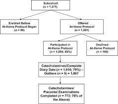 Flow Chart Of Data On Catecholamine Levels In Maternal Urine