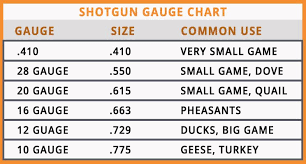 biggest gauge size guide to shotgun gauge size