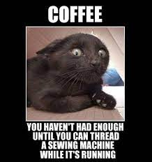 That day is far on the horizon. Need More Coffee Funny Post Funny Cat Memes Cat Memes Funny Animal Pictures