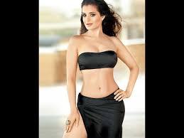Ameesha Patel Hot Bikini South Indian Cinema Magazine