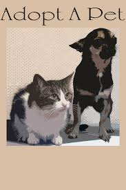 Pet Poster Adopt A Pet Poster Free Stock Photo Public Domain Pictures 17