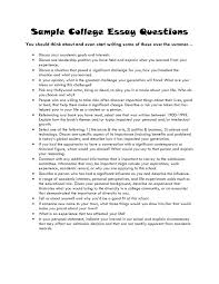 Example Of A College Essay College Application Essay Examples About Yourself Writings And