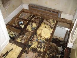 bathroom remodeling wilmington nc. Bathroom Remodeling Mistakes Wilmington Nc
