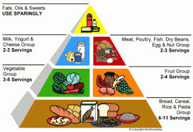 Food Pyramid Project Food Pyramid Project Introduction