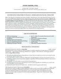Resume For Financial Analyst Adorable Sample Resume Finance Manager Car Dealership For Financial Analyst