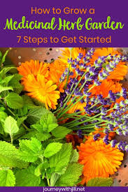 medicinal herb gardening for beginners
