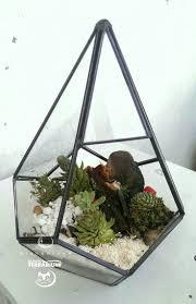 Succulent Terrarium, Terraria, Succulents, Cactus, Handmade Crafts, Cactus  Plants, Terrariums, Succulent Plants
