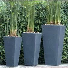 large pots for plants best plants for large pots nz outdoor pots for plants uk
