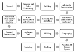 Winemaking Log Chart Traditional Method Sparkling Wine Flowchart That Depicts The